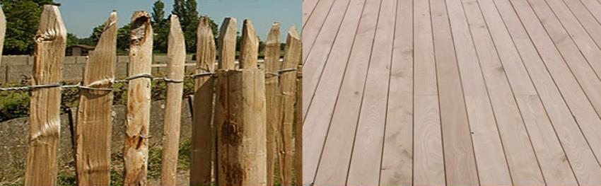Aménagements Spéciaux : Chêne, Châtaignier, Acacia